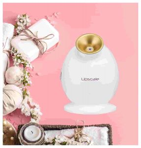 Upscale Premium Nano Ionic Hot Mist Facial Steamer For All Skin Types